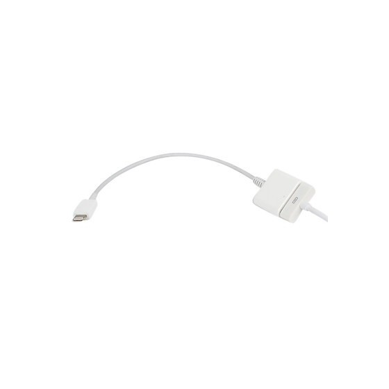 Adaptateur Lightning vers 30 broches - iPhone