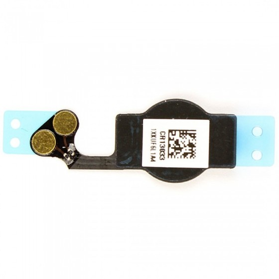 Nappe bouton home - iPhone 5