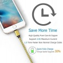 Câble USB Lightning 3m tressé incassable pour iPhone et iPad – Or
